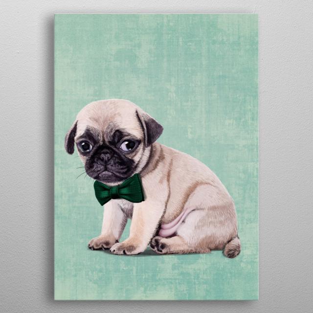 Angry Pug metal poster