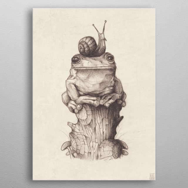 frog and snail  metal poster