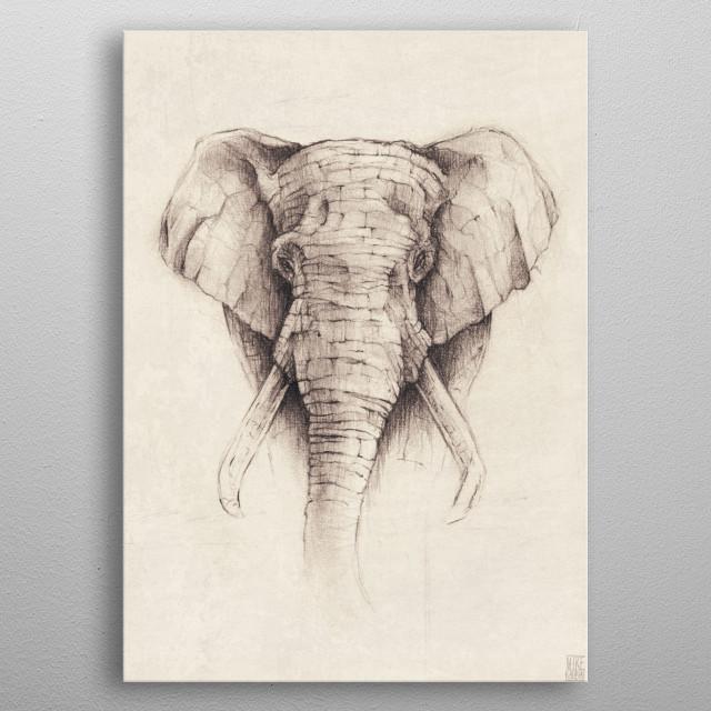 Elephant metal poster