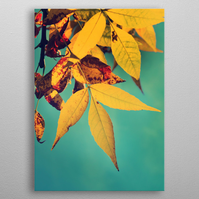 This marvelous metal poster designed by supertramp8 to add authenticity to your place. Display your passion to the whole world. metal poster