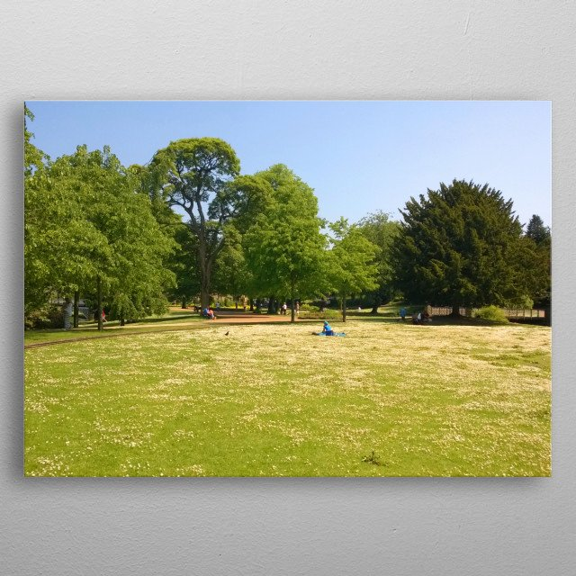Picnic in the Park metal poster
