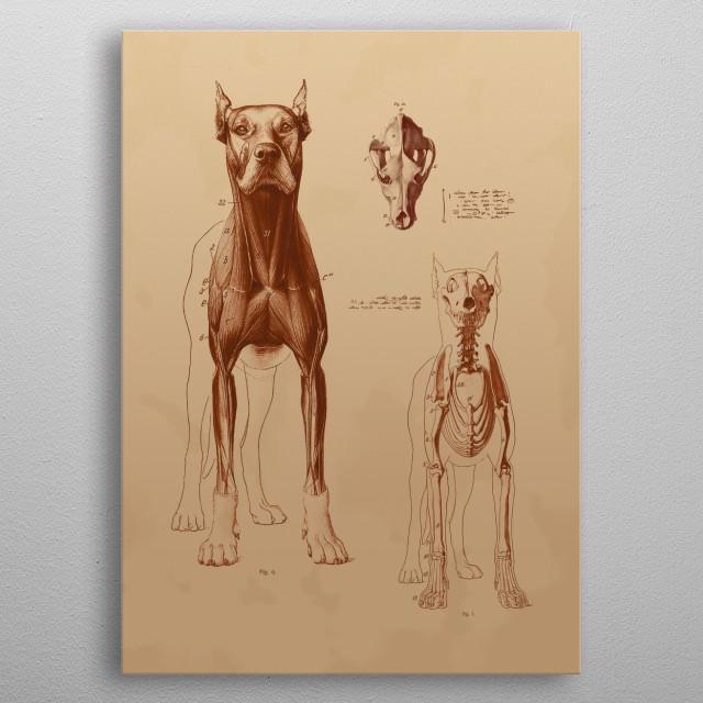 Big Dog  metal poster