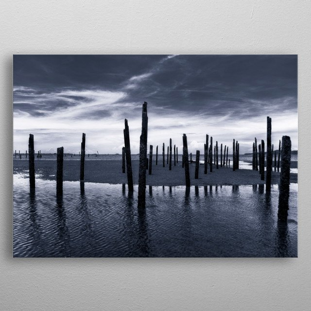 Fine art monochrome photography in black and white of seascape wood sticks in the ocean metal poster