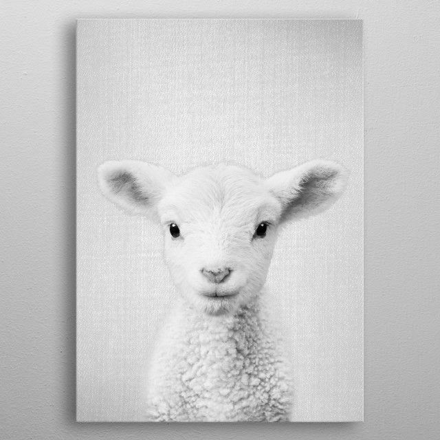 """Lamb - Black & White For more black & white animals check out the collection in the main page of my shop """"Gal Design"""". metal poster"""