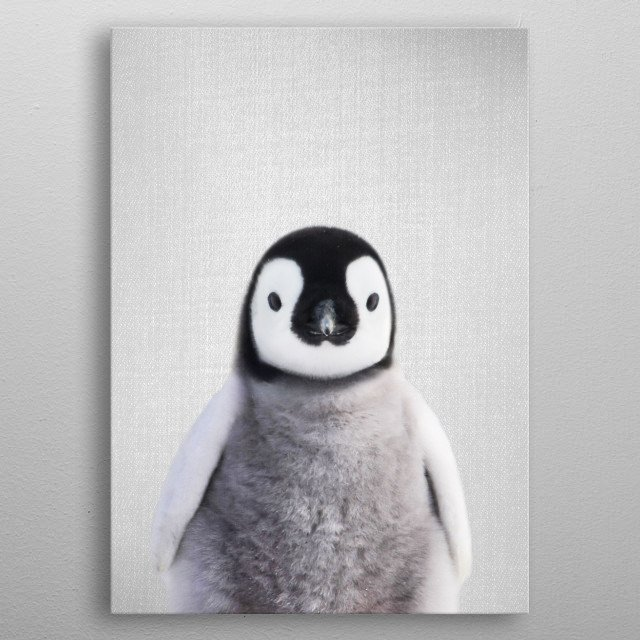 "Baby Penguin - colorful. For more colorful animals check out the collection in the main page of my shop ""Gal Design"". metal poster"