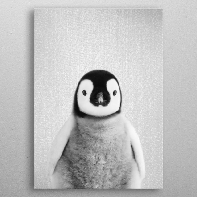 Baby Penguin - Black & White. For more black & white animals check out the collection in the main page of my shop Gal Design. metal poster