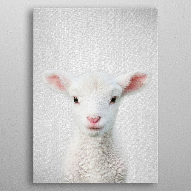 """Lamb - Colorful. For more colorful animals check out the collection in the main page of my shop """"Gal Design"""". metal poster"""