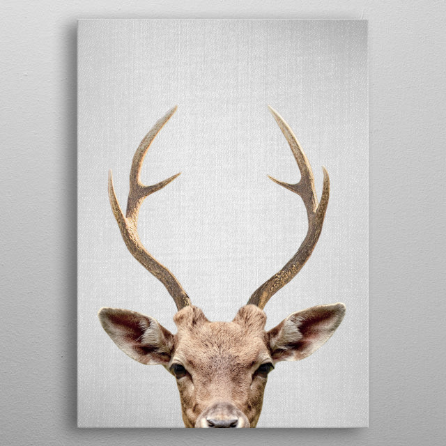 Deer - Colorful. For more colorful animals check out the collection in the main page of my shop Gal Design. metal poster
