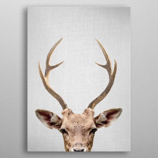 "Deer - Colorful. For more colorful animals check out the collection in the main page of my shop ""Gal Design"". metal poster"