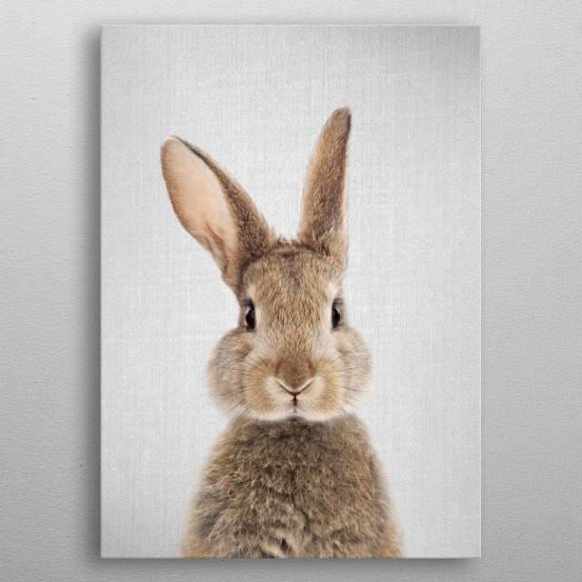 "Rabbit - Colorful. For more colorful animals check out the collection in the main page of my shop ""Gal Design"". metal poster"