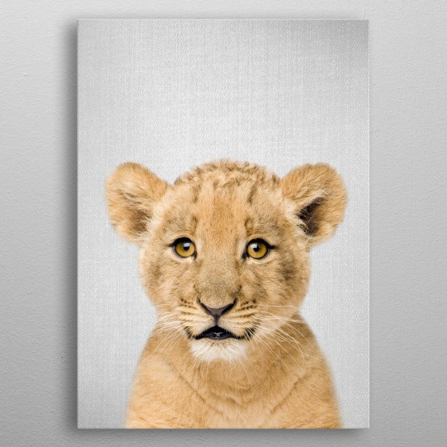 """Baby Lion - Colorful. For more colorful animals check out the collection in the main page of my shop """"Gal Design"""". metal poster"""