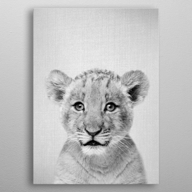 """Baby Lion - Black & White. For more black and white animals check out the collection in the main page of my shop """"Gal Design"""". metal poster"""
