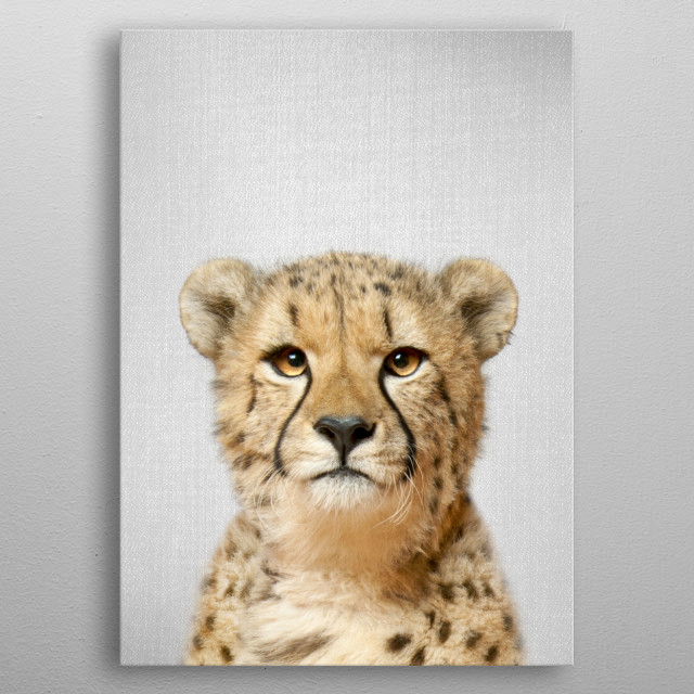 Cheetah - Colorful. For more colorful animals check out the collection in the main page of my shop Gal Design. metal poster
