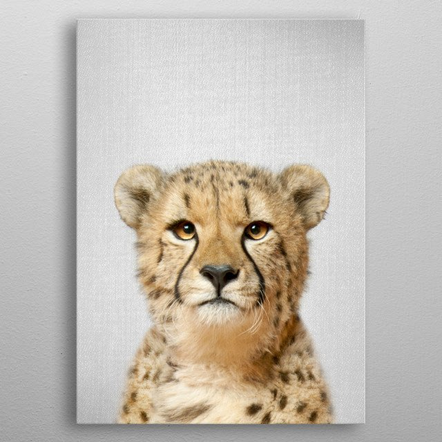 """Cheetah - Colorful. For more colorful animals check out the collection in the main page of my shop """"Gal Design"""". metal poster"""