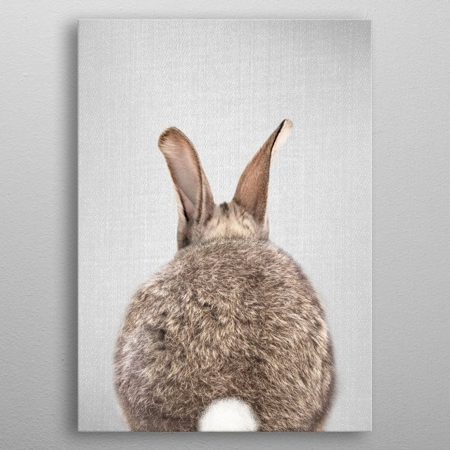 """Rabbit Tail - Colorful. For more colorful animals check out the collection in the main page of my shop """"Gal Design"""". metal poster"""