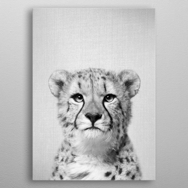 "Cheetah - Black & White For more colorful black and white check out the collection in the main page of my shop ""Gal Design"". metal poster"