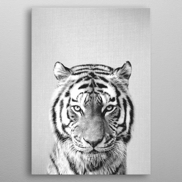 """Tiger - Black & White. For more black and white animals check out the collection in the main page of my shop """"Gal Design"""". metal poster"""