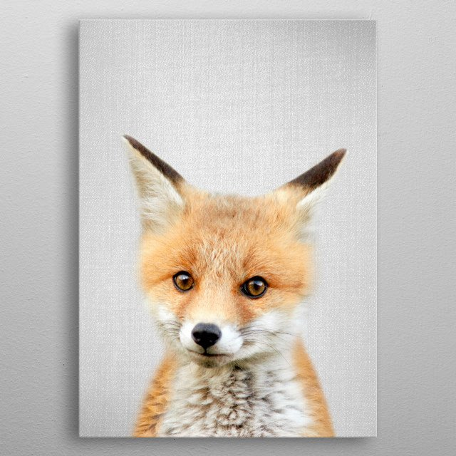 Baby Fox - Colorful. For more colorful animals check out the collection in the main page of my shop Gal Design. metal poster