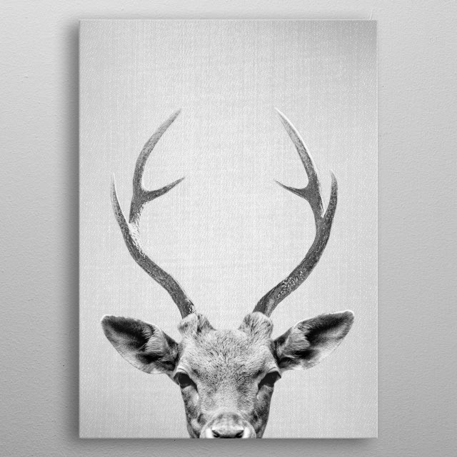Deer - Black & White. For more black & white animals check out the collection in the main page of my shop Gal Design. metal poster