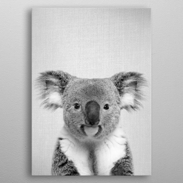 Koala - Black & White. For more black & white animals check out the collection in the main page of my shop Gal Design. metal poster