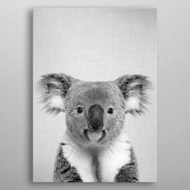 """Koala - Black & White. For more black & white animals check out the collection in the main page of my shop """"Gal Design"""". metal poster"""