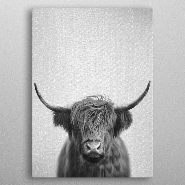 """Highland Cow - Black & White. For more black & white animals check out the collection in the main page of my shop """"Gal Design"""". metal poster"""