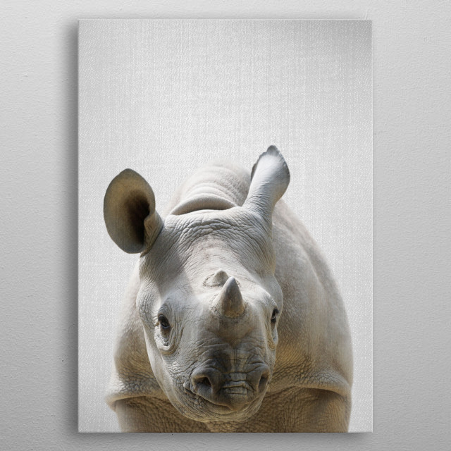 """Baby Rhino - Colorful. For more colorful animals check out the collection in the main page of my shop """"Gal Design"""". metal poster"""