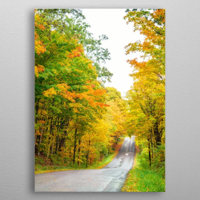I photographed this autumn scene on an October day in New York State. Bright yellow, orange, and green trees canopy the country road. metal poster