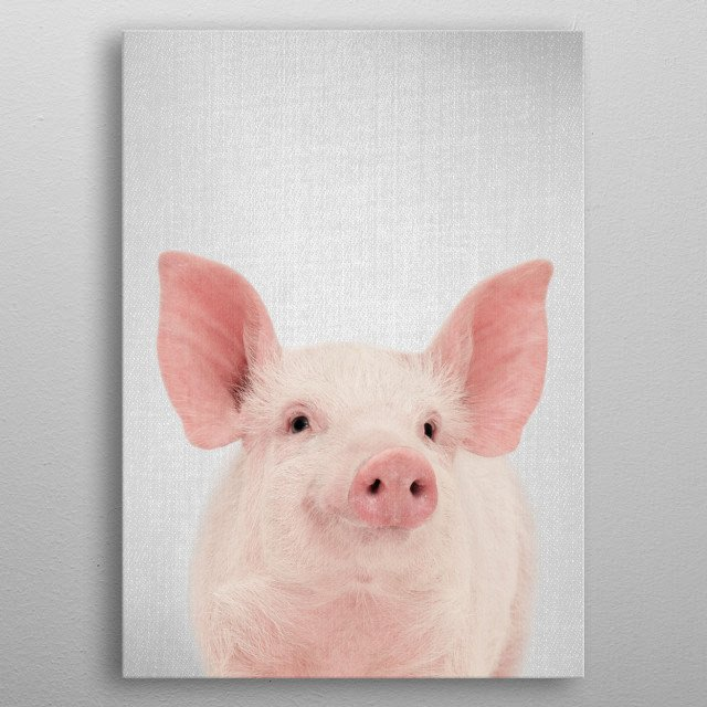 Pig - Colorful. For more colorful animals check out the collection in the main page of my shop Gal Design. metal poster
