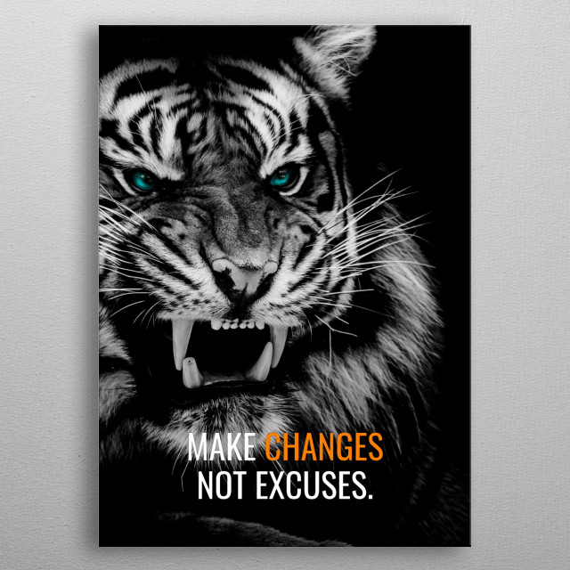 Make changes, Not Excuses metal poster