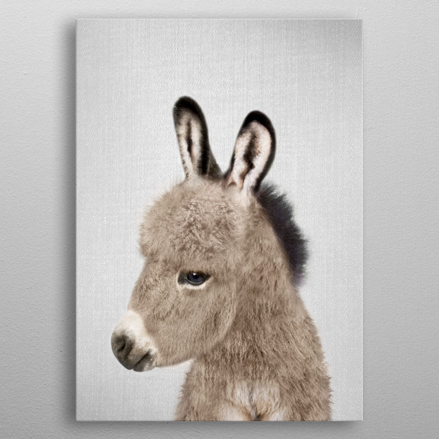"""Donkey - Colorful. For more colorful animals check out the collection in the main page of my shop """"Gal Design"""".   metal poster"""