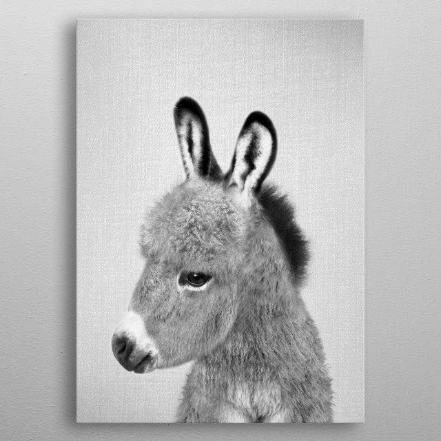 Donkey - Black & White. For more black & white animals check out the collection in the main page of my shop Gal Design. metal poster