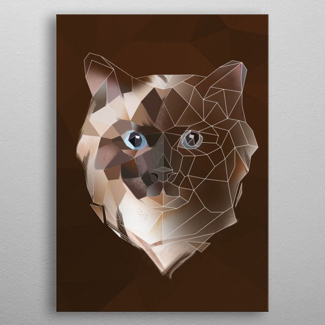 Modern Ragdoll cat  metal poster