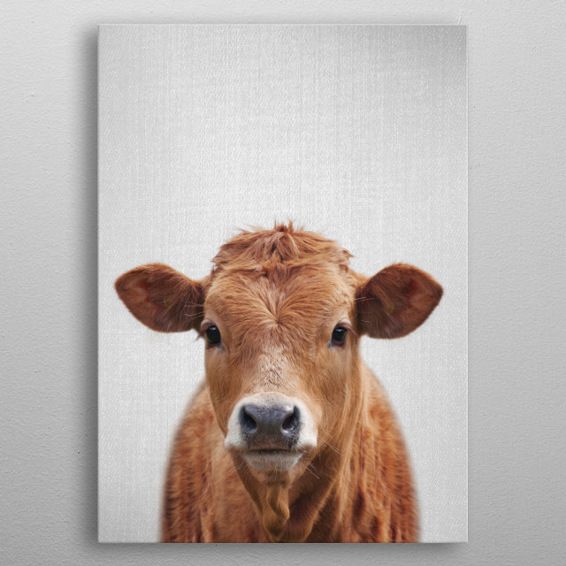 Cow - Colorful.  For more colorful animals check out the collection in the main page of my shop Gal Design. metal poster