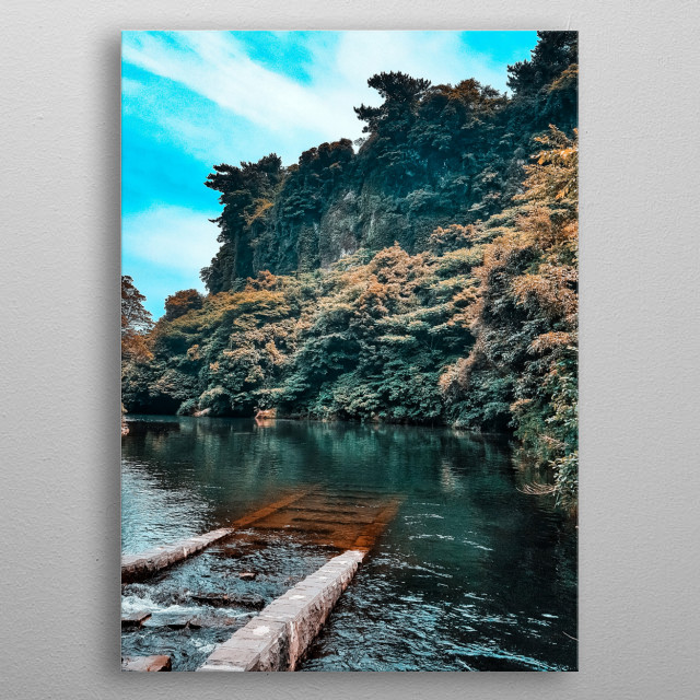 Take a journey to the unknown underwater world. It was taken at the beautiful Volcanic island of Korea called Jeju,showing beautiful nature. metal poster
