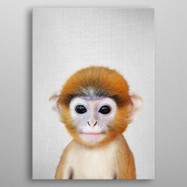 """Baby Monkey - Colorful. For more colorful animals check out the collection in the main page of my shop """"Gal Design"""". metal poster"""