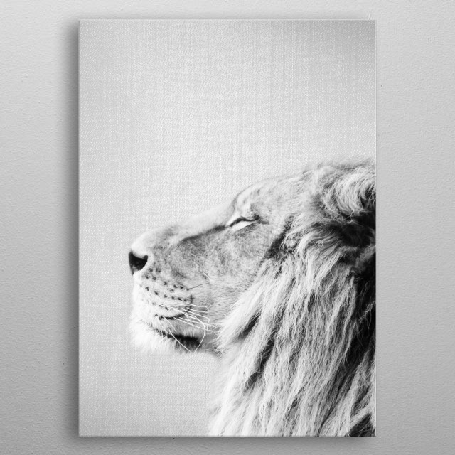 Lion Portrait - Black & White. For more black & white animals check out the collection in the main page of my shop Gal Design. metal poster