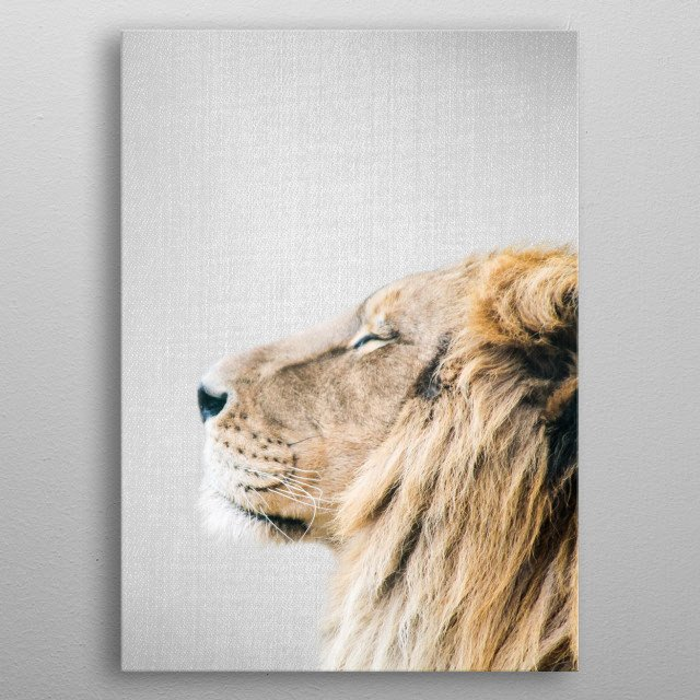 Lion Portrait - Colorful. For more colorful animals check out the collection in the main page of my shop Gal Design. metal poster