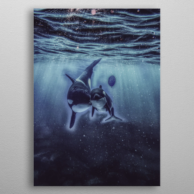 Photo-manipulation of a young whale holding a balloon, as if they are human  metal poster
