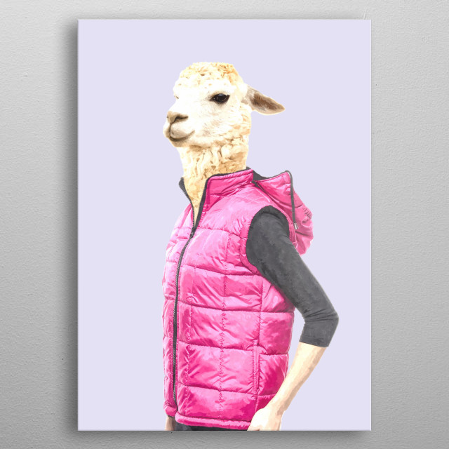 Fashionable llama modern illustration. Cool animal, watercolor effect, for animal lovers. Humorous and funny art for your home or office metal poster