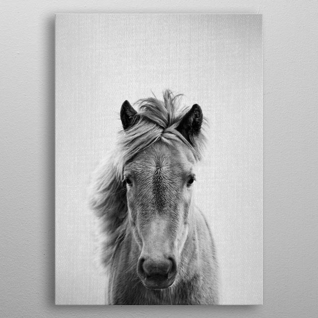 """Horse - Black & White. For more black & white animals check out the collection in the main page of my shop """"Gal Design"""". metal poster"""