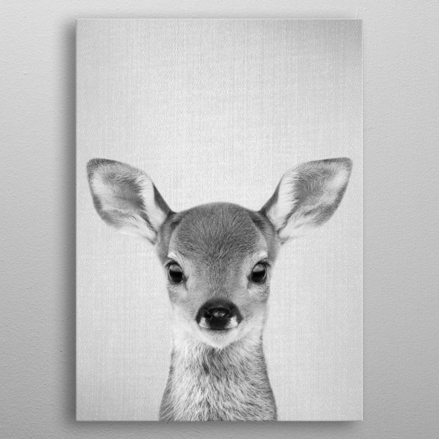"""Baby Deer - Black & White. For more black & white animals check out the collection in the main page of my shop """"Gal Design"""".   metal poster"""