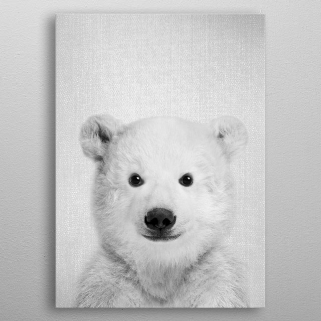 Baby Polar Bear Bw By Gal Design Metal Posters Displate
