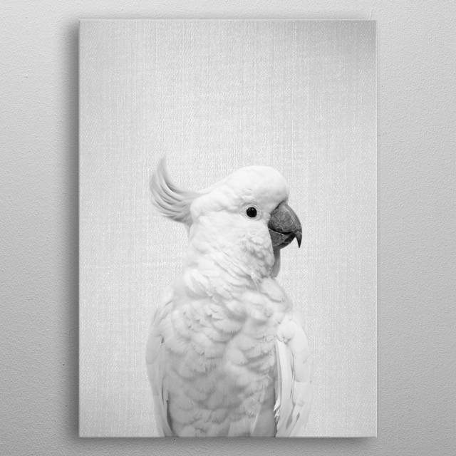 """White Cockatoo - Black & White. For more black & white animals check out the collection in the main page of my shop """"Gal Design"""". metal poster"""