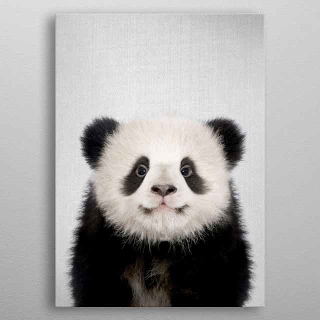Baby Panda Bear - Colorful. For more colorful animals check out the collection in the main page of my shop Gal Design.   metal poster