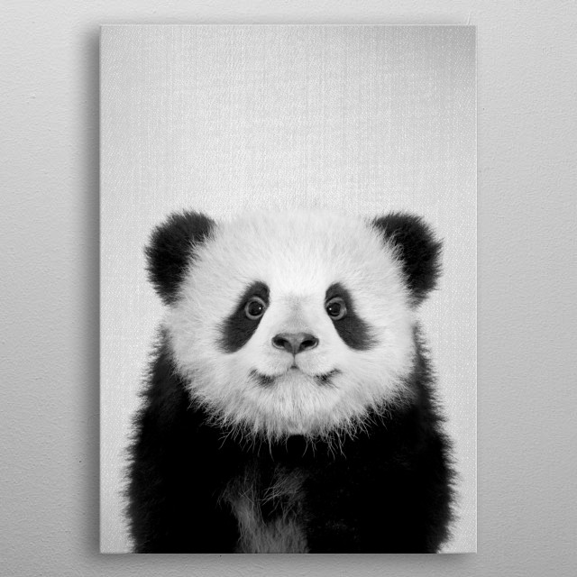 "Baby Panda Bear - Black & White. For more black & white animals check out the collection in the main page of my shop ""Gal Design"". metal poster"