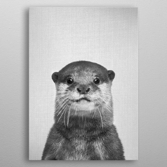 """Otter - Black & White. For more black & white animals check out the collection in the main page of my shop """"Gal Design"""". metal poster"""
