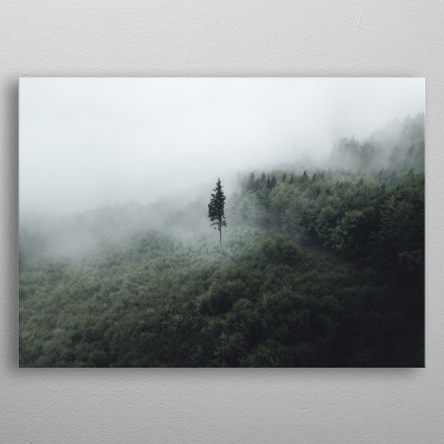 A lone tree in Golden Mountains in Czech Republic.  metal poster