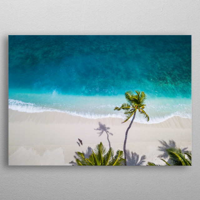 Bird's eye view over a white sand beach, dotted with bright green palm trees. metal poster