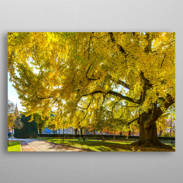 High-quality metal wall art meticulously designed by AlexanderSorokopud would bring extraordinary style to your room. Hang it & enjoy. metal poster